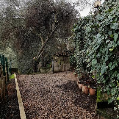 A  louer F2  Salario jardin