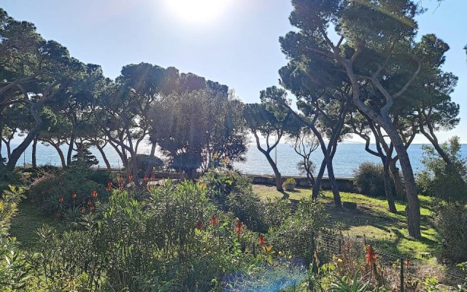 F4 à louer La Pinède  jardin vue mer