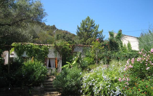 Jardin,  Maison F4 à louer proche de Coti Chiavari