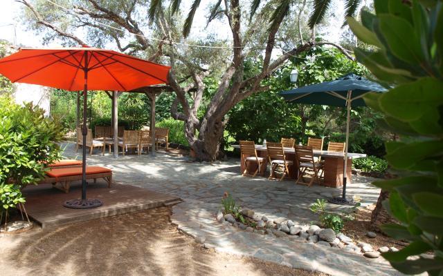 Grand jardin,  Maison F4 à louer proche de Coti Chiavari