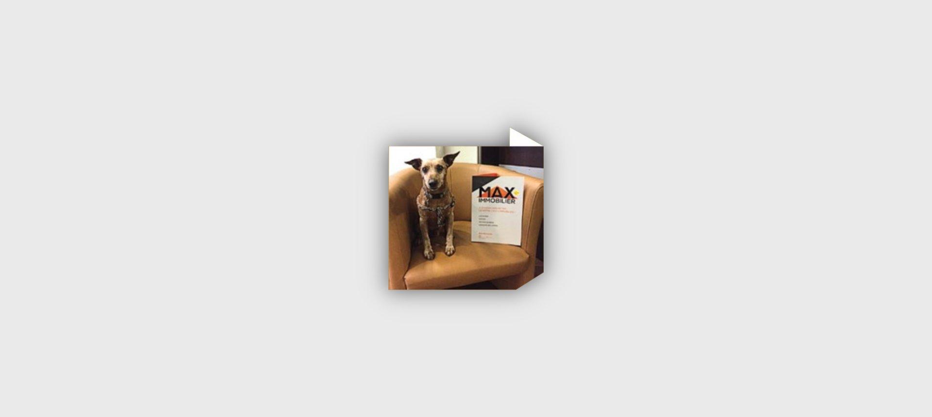 A louer F2 meuble rez de jardin Appietto coin cuisine